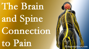 Cox Chiropractic Medicine INC looks at the connection between the brain and spine in back pain patients to better help them find pain relief.