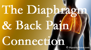 Fort Wayne Chiropractic Radiological Center knows the relationship of the diaphragm to the body and spine and back pain.