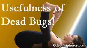 Fort Wayne Chiropractic Radiological Center finds dead bugs quite useful in the healing process of Fort Wayne back pain for many chiropractic patients.