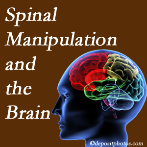 Cox Chiropractic Medicine INC [presents research on the benefits of spinal manipulation for brain function.